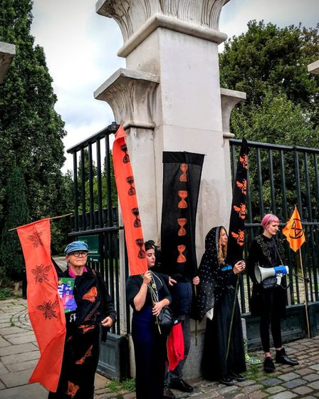 XR campaigners marched on Abney Park at the weekend to mourn the loss of the Red Girdled Mining Bee