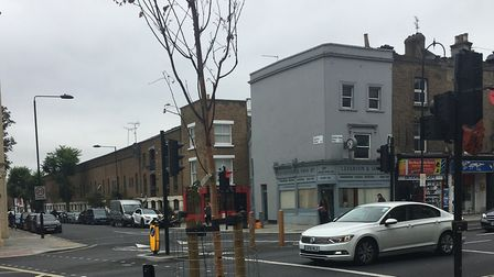 A recently planted in Kentish Town Road which has since died. Picture: HARVEY FLINDER