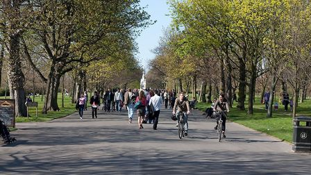 There are a lot of unresolved issues in Regent's Park. Picture: Tom Page/Creative Commons