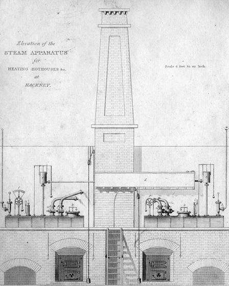 The steam apparatus used for the Loddiges hothouse. Picture: Hackney Archives