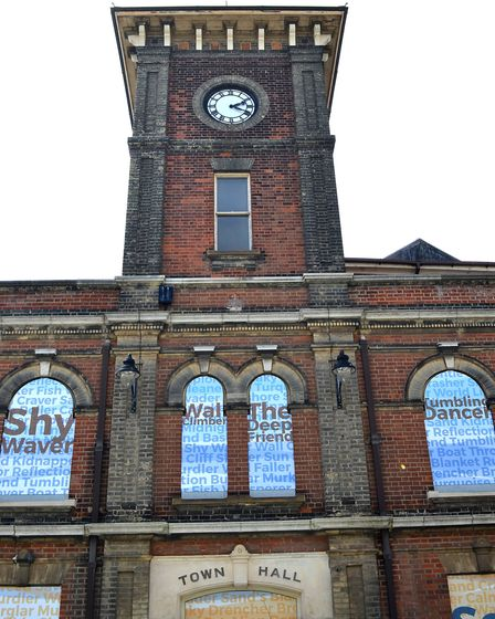 The completed installation of artworks on 50 panels at Lowestoft town hall. Picture: Mick Howes