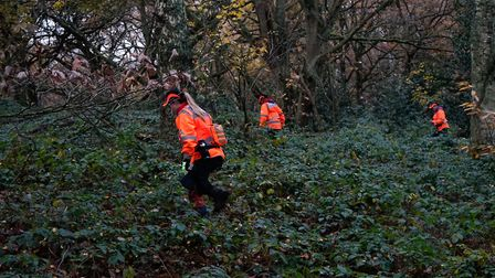 A London Search and Rescue team investigate brambles and brush on Hampstead Heath during a missing p