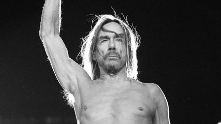 Iggy Pop is also another high-profile act confirmed for next year's festival. Picture: Supplied