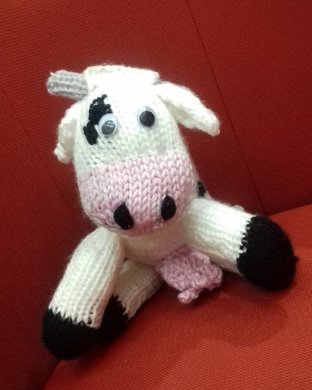 The lost knitted cow. Picture: Louise Gooch