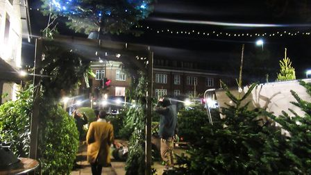 The family business at the Woodman sells hundreds of trees in the pivotal two weeks before Christmas