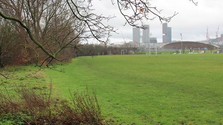The edible woodland will be planted in the east marsh. Picture: Hackney Council