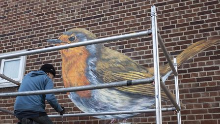 ATMstreetart working on the mural. Picture: Charlie Peel, Urban Good 2020