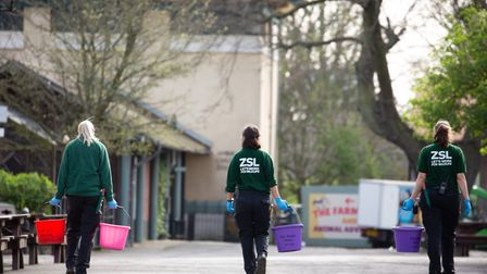 Behind the scenes at London Zoo where keepers stay on site to look after the animals
