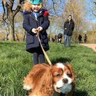 Four-year-old Aria walking Khyara's dog Prince while she self-isolates, as part of West Hampstead Mu