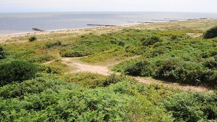 Historic oil pollution has been found at Gunton Warren. Picture: Archant library.