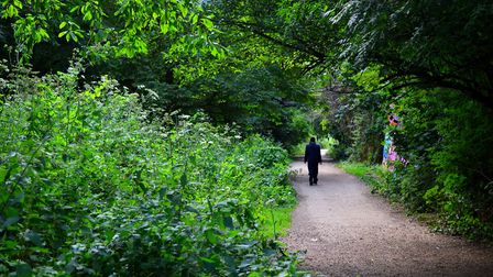 Haringey Council says it will lay down two-metre markers on the path this week. Picture: Polly Hanco
