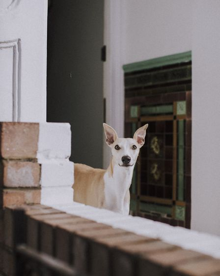 Tobi has lived on the street for two years. Picture: Zoe Savitz