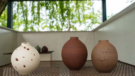 Gatherers Exhibition at OmVed Gardens in Highgate can be viewed virtually in a 360 degree film