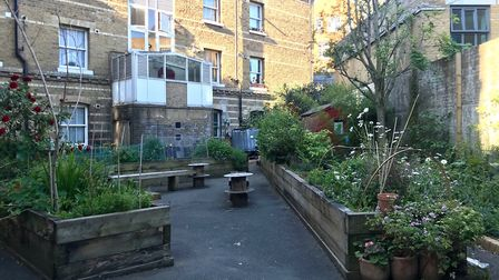 The Peabody Blackfriars Estate community garden, a space for growing and networking. Picture: Carole
