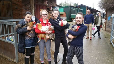 The animals at Kentish Town City Farm need feeding. Picture: KTCF