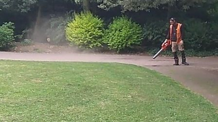 A blower in action in Waterlow Park. Picture supplied by S McAuslane