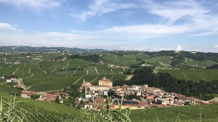 The hills of Piedmont provide heat, sunlight, water and nutrients, making it the ideal place for vin