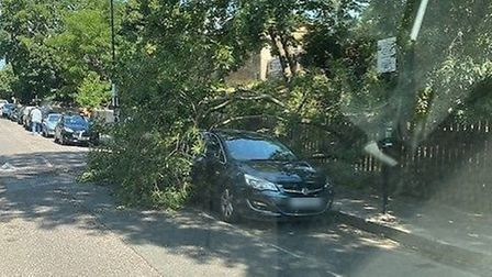 A Thames Water tree fell on the car. Picture: Submitted