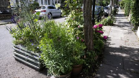Parking Space Gardening, with permission, in N7