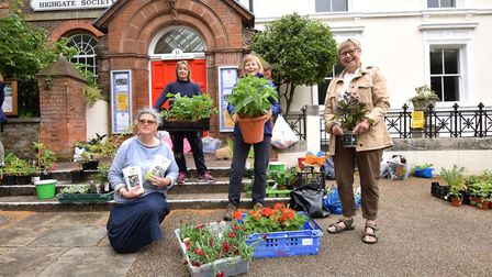 Highgate Horticultural Society plant sale supporting the Harrington Scheme, in front of HLSI on 27.0