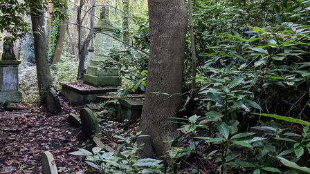 Highgate Cemetery. Picture: Sam Volpe