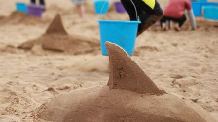 Examples of the marine themed sand sculptures. Picture: Sand in Your Eye