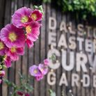 Dalston Eastern Curve Garden is fundraising to stay open and free for all. Picture: Dalston Eastern