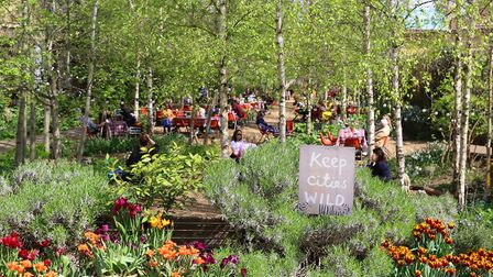 The garden has already raised more than �58,000 since it launched about two weeks ago. Picture: Dals