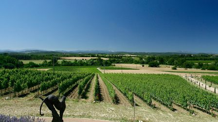 Rose wine reccs and 1: Haut Gléon in the Vallée du Paradis, source of fine rosé 2: More and more