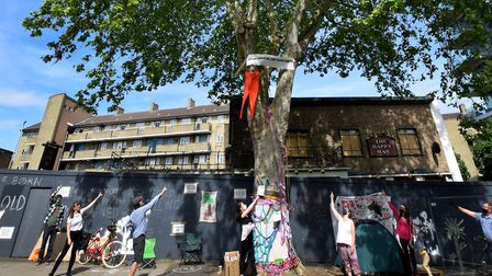 Campaigners hoping to save the 150-year-old London Plane tree that stands outside the former Happy M