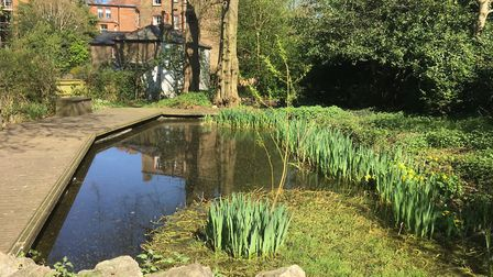 Hampstead Heath's 'secret garden' - the venue for education sessions to boost wellbeing. Picture: C
