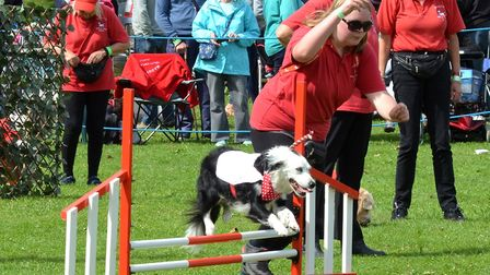 Waggy Tails Dog Display Team. Picture: Mick Howes