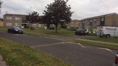 Police at Blyford Road on Sunday. Pictures: Archant