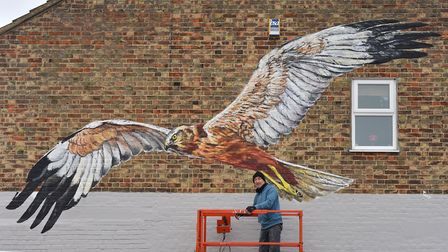 ATM street artist painting a mural on the side of Smith Brother Timber, Oulton Broad for Suffolk Wil