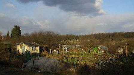 The man was found dead in a shed after a fire at East Finchley Allotments. Picture: flourishlife.blo