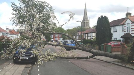 Hannah Quinlan had a lucky escape when a tree fell on her £9,500 car