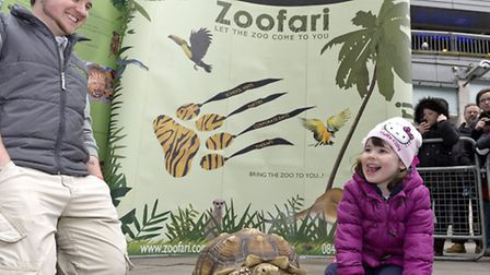 Lily Rose Dowling, four, with Darwin the tortoise at the Zoofari mobile zoo