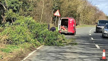 Police have thanked a driver who used his chainsaw to remove a tree from the A12 at Wrentham. Pictur