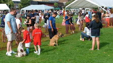 The Paradise Park Fun Day takes place this weekend