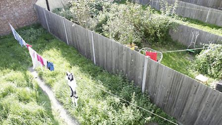 Overgrown gardens are being blamed for a pensioner's health problems.