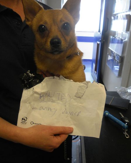 Paws was dumped in Sainsbury's in Willesden Green