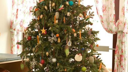 Remember to recycle your tree