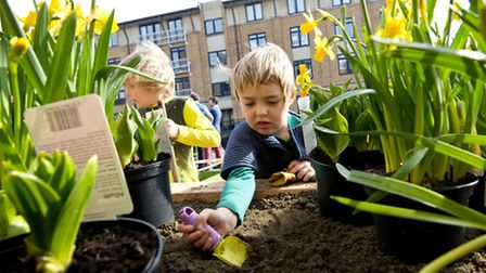 Emily 5, from Hanover Primary School helps to regenerate a patch of unused land Pic: Matt Crossick/P