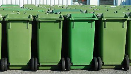 Brent Council may introduce a fee for green waste collection