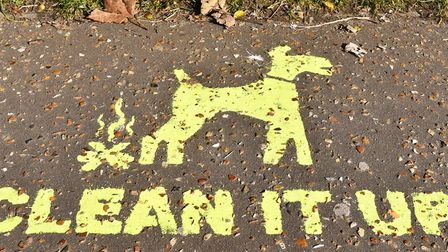 Three dog owners have been prosecuted for failing to clean up after their pets. Picture: James Bass