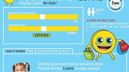 A fake website was even set up to maintain the ruse (Picture: Darren Cullen/Pocket Money Loans)