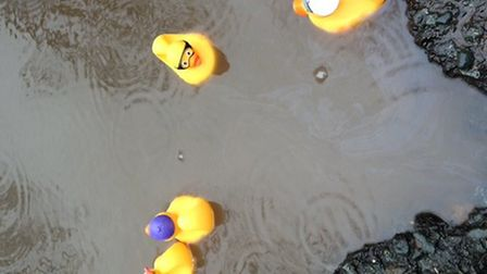 Islington's potholes have caused some people to float rubber ducks on them in protest