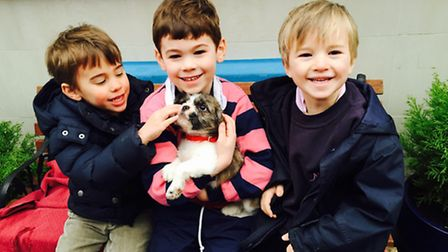 Willl Hewitt, Henry Hewitt and their friend Ludo, with Milly, one of the Mayhew's first rescue dogs
