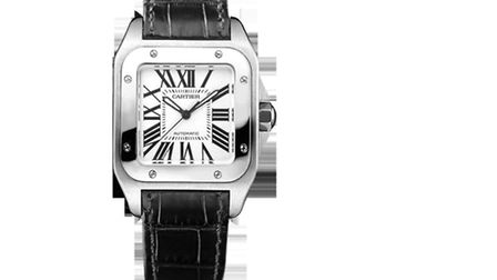 A Cartier Santos 100 like this was stolen?