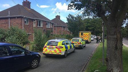 Police are investigating two deaths in two days on Normanston Drive in Lowestoft. Picture: Archant